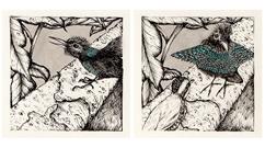 thumb_birds